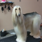 L'Art Du Style Canin - Pet Grooming, Clipping & Washing