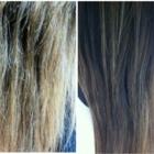 Voir le profil de Blondes Hair Studio - Vancouver